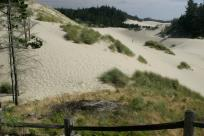 Oregon Dunes by Traci Williamson