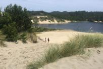 Florence Sand Dunes by Abbie Youngs