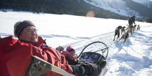 Dog sledding in Anchorage