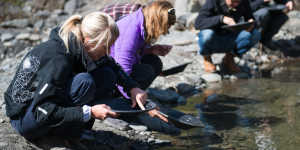 Crow Creek Mine gold panning