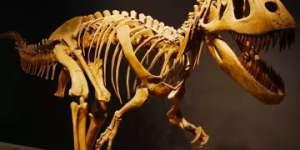 Mesalands Community College's Dinosaur Museum