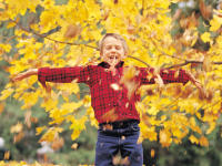 Boy in the Fall Leaves