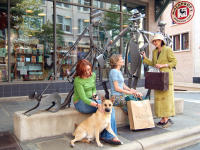 Asheville, a pet-friendly city
