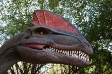 Gallery Dilophosaurus