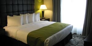 Prairie Meadows Hotel Guestroom