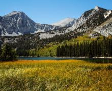 Davis Lake Fall Colors
