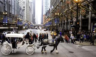 holidayhorsecarriage