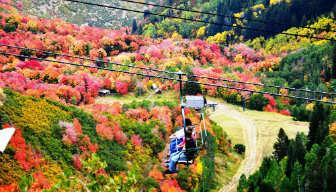 Nature Lover Itineraries