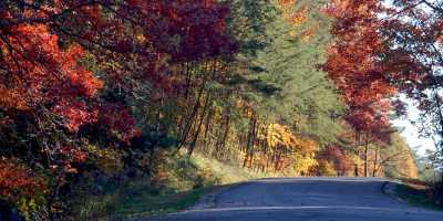 Fall foliage, SoIN country road