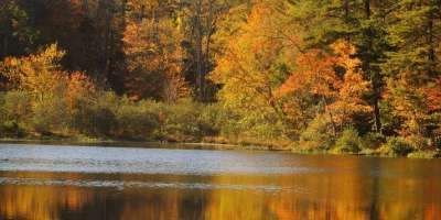 Fall Color Forecast - Sept. 26, 2012