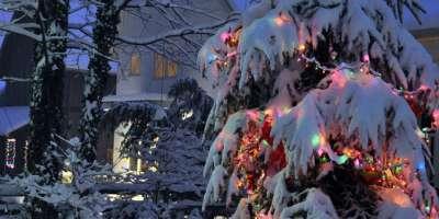 Holiday Snow Pics