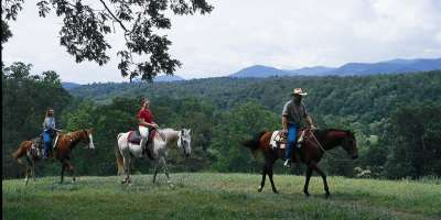 Horse Lovers—Plan an Equestrian Vacation in Asheville