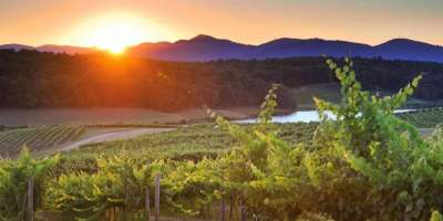 3 Ways to Celebrate a Mountain Harvest