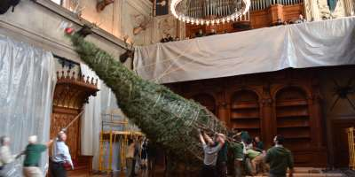 Biltmore Tree Raising 2016