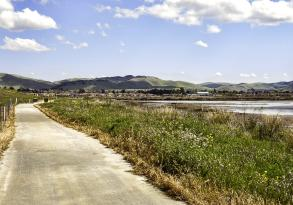 American Canyon Wetlands