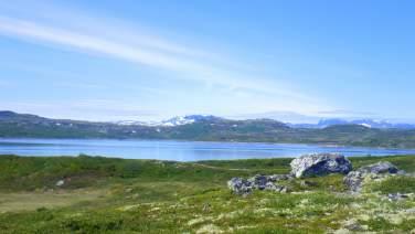 Rødungen, Ål i Hallingdal