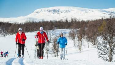 Cross country skiing in Geilo