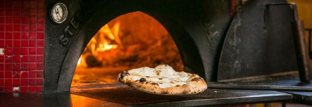 Wood Fire Oven with Pizza