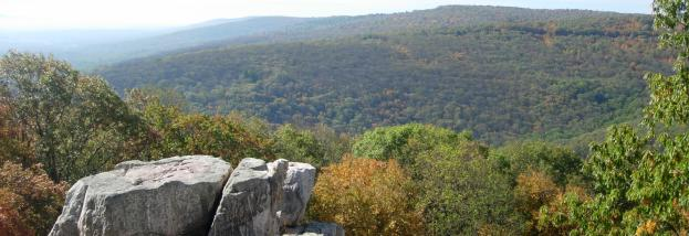 Catoctin Mountain Park Fall Foliage