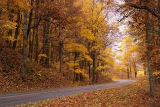 Where to See Fall Colors