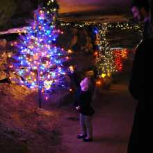 Ruby Falls Christmas Underground Tree