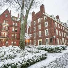 Harvard Snow Storm