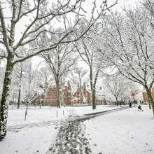 Harvard Yard in Snow