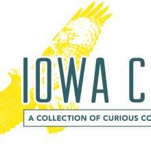 CMYK Logo - Hawk