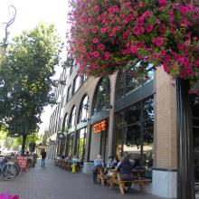 Downtown Eugene by Molly Blancett