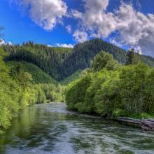 McKenzie River on a Clear Day
