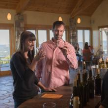 Valhalla Vineyards - Wine Tasting