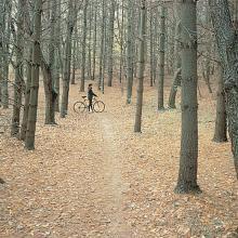 Rockford, Illinois Rock Cut State Park