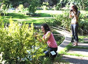 W.J. Beal Botanical Garden