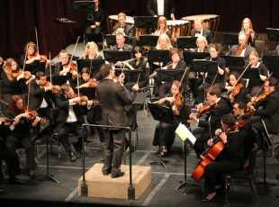 Symphony performers