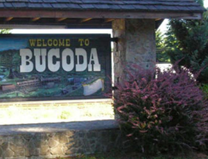welcome to bucoda sign