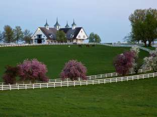 Spring at Manchester Farm