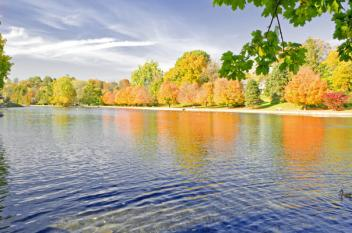 Children's Lake Fall Foliage-700