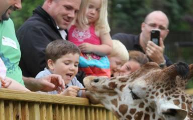 Elmwood Park Zoo Header