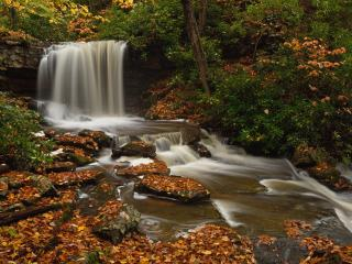 Charlotte Pletcher, Cole Run Falls, Somerset County