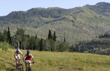 Mountain Biking in the Wasatch