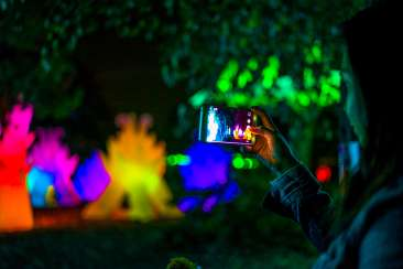 Oakland Zoo Lights