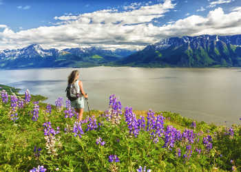 Anchorage hiking trails above Turnagain Arm