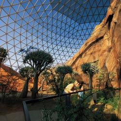 Omaha's Henry Doorly Zoo - Desert Dome