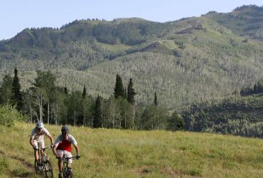 Mountain Biking in the Wasatch