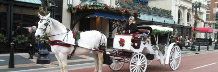 Common Gentry Carriage Company Holidays