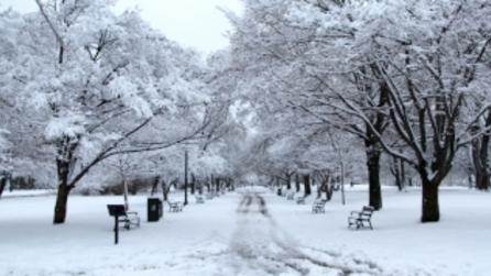 Washington Park - Photo Courtesy of Albany County Convention & Visitors Bureau