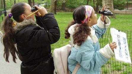 Central Park Birding