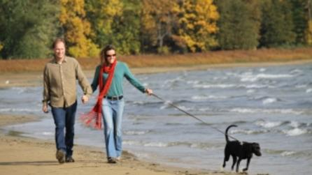point au roche couple dog beach 6 - Photo by Adirondack Coast Visitors Bureau