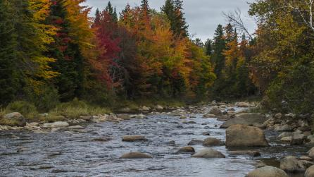 Ausable River by Olympic Jumping Complex 69