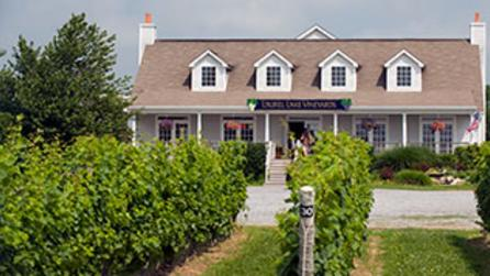 Laurel Lake Vineyard